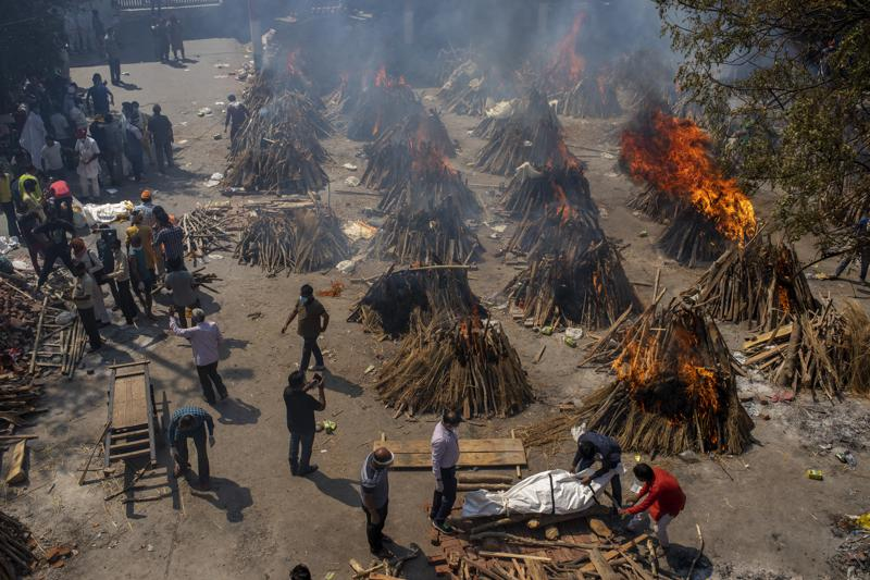 india covid 19 deaths
